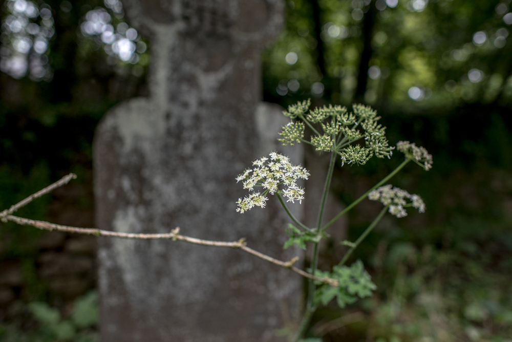 Sancreed_Cemetery-7