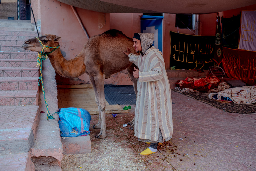 Pilgrimage : Moulay Brahim and the Gnaoua